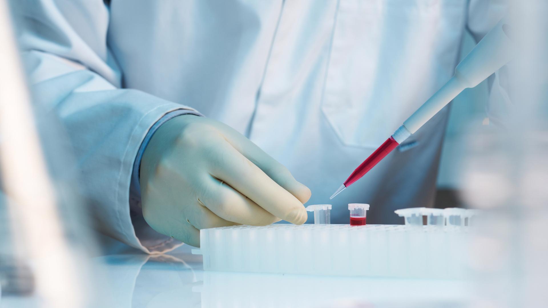 Использование стволовых клеток в современной медицине